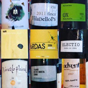 Wine tasting with Wine Secrets Barcelona